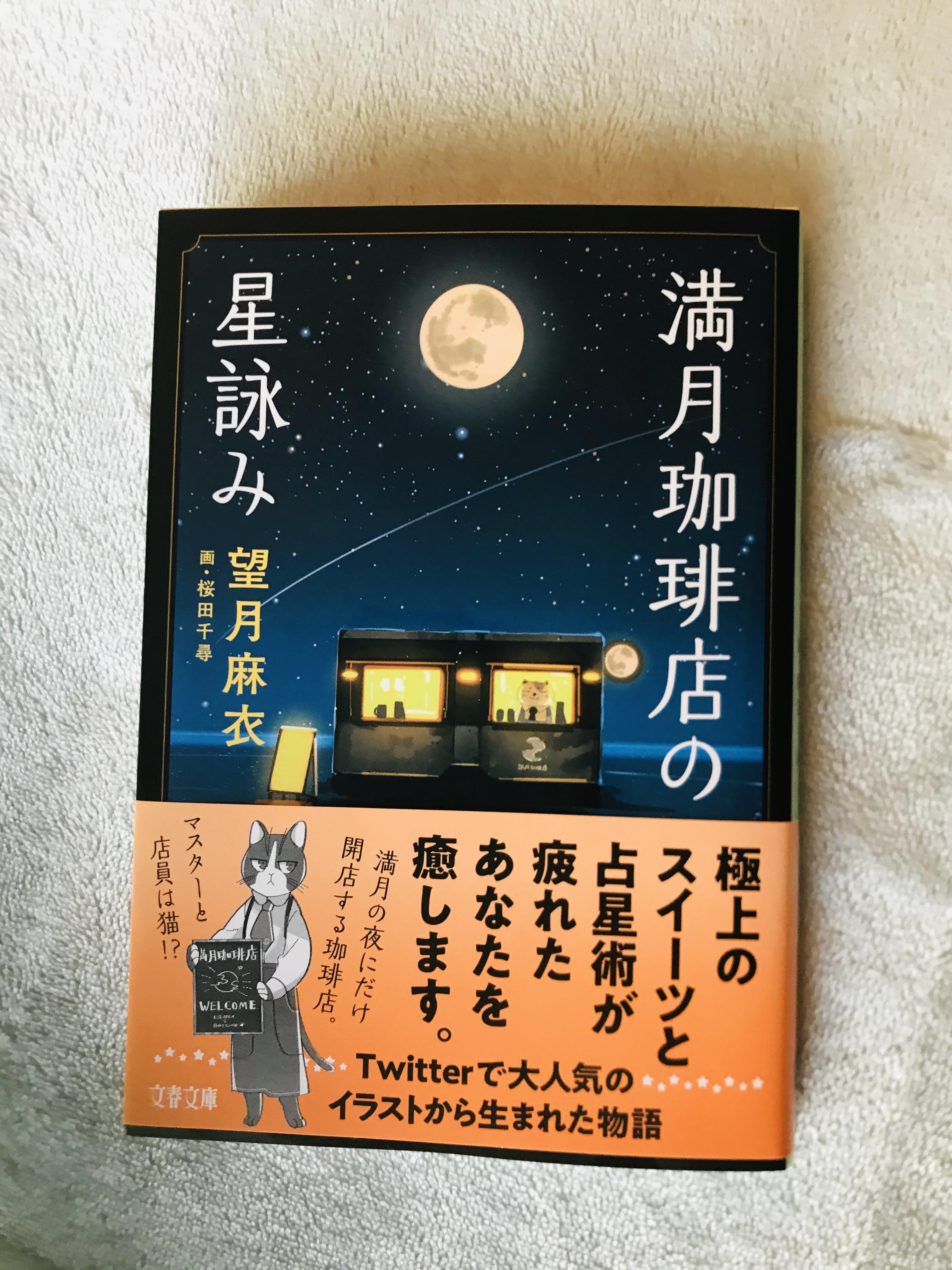 麻衣 望月