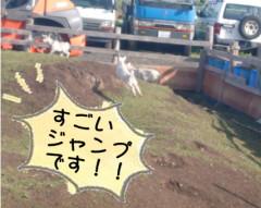 4月15日やぎさん-2.jpg
