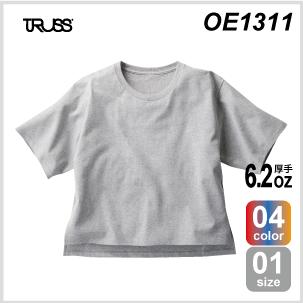 OE1311.png