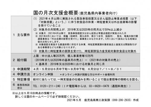 概要)国の一時支援金及び月次支援金_page-0002.jpg