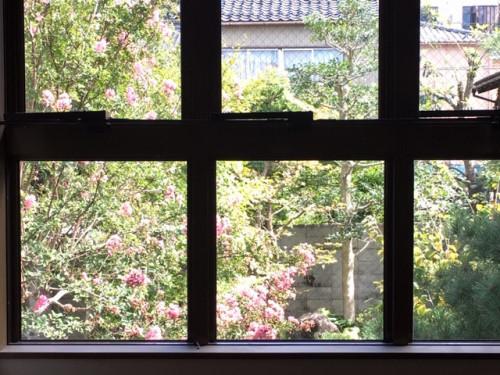 窓庭.JPG