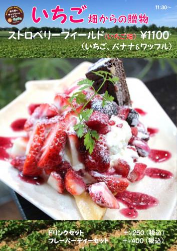 イチゴの季節201802 いちご畑_01.jpg