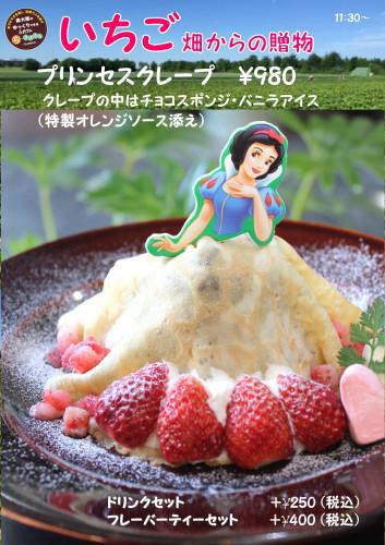 イチゴの季節201802 いちご畑.jpg