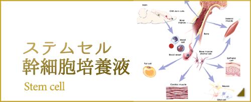 ステムセル幹細胞培養液