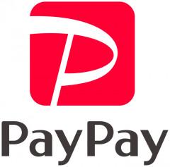 paypay_logo.jpg