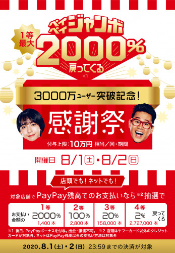 paypay3000.png