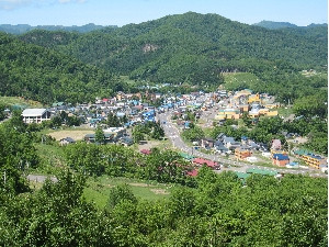 とある年の村の眺め