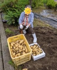 ジャガイモ掘り.jpg