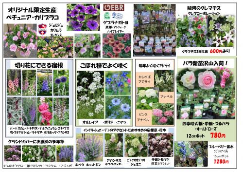 2020春チラシ裏面_page-0001.jpg