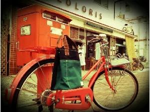 コロリス自転車