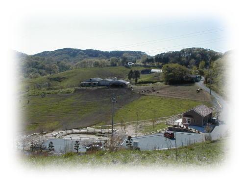 (有)まつだ牧場 ミルク工房