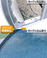 carfilm_NP_D.jpg