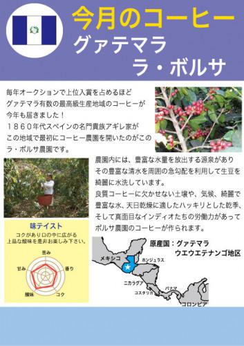 2019.8月グァテマラ-ボルサ (002).jpg