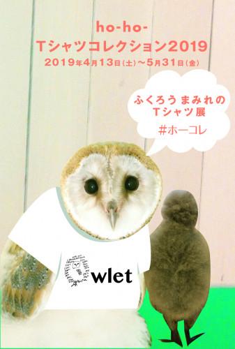 ホーコレ2019DM.jpg