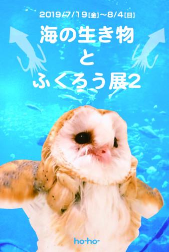 海の生き物とふくろう展2DMOL.jpg