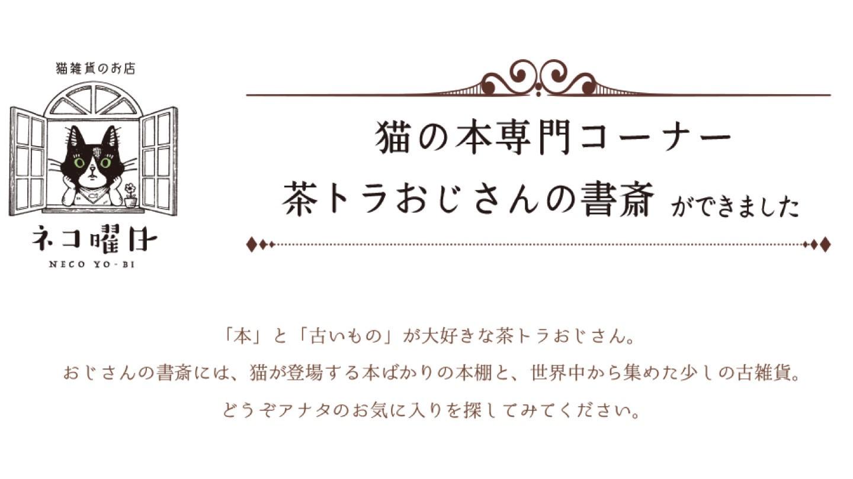 茶トラ①.jpg