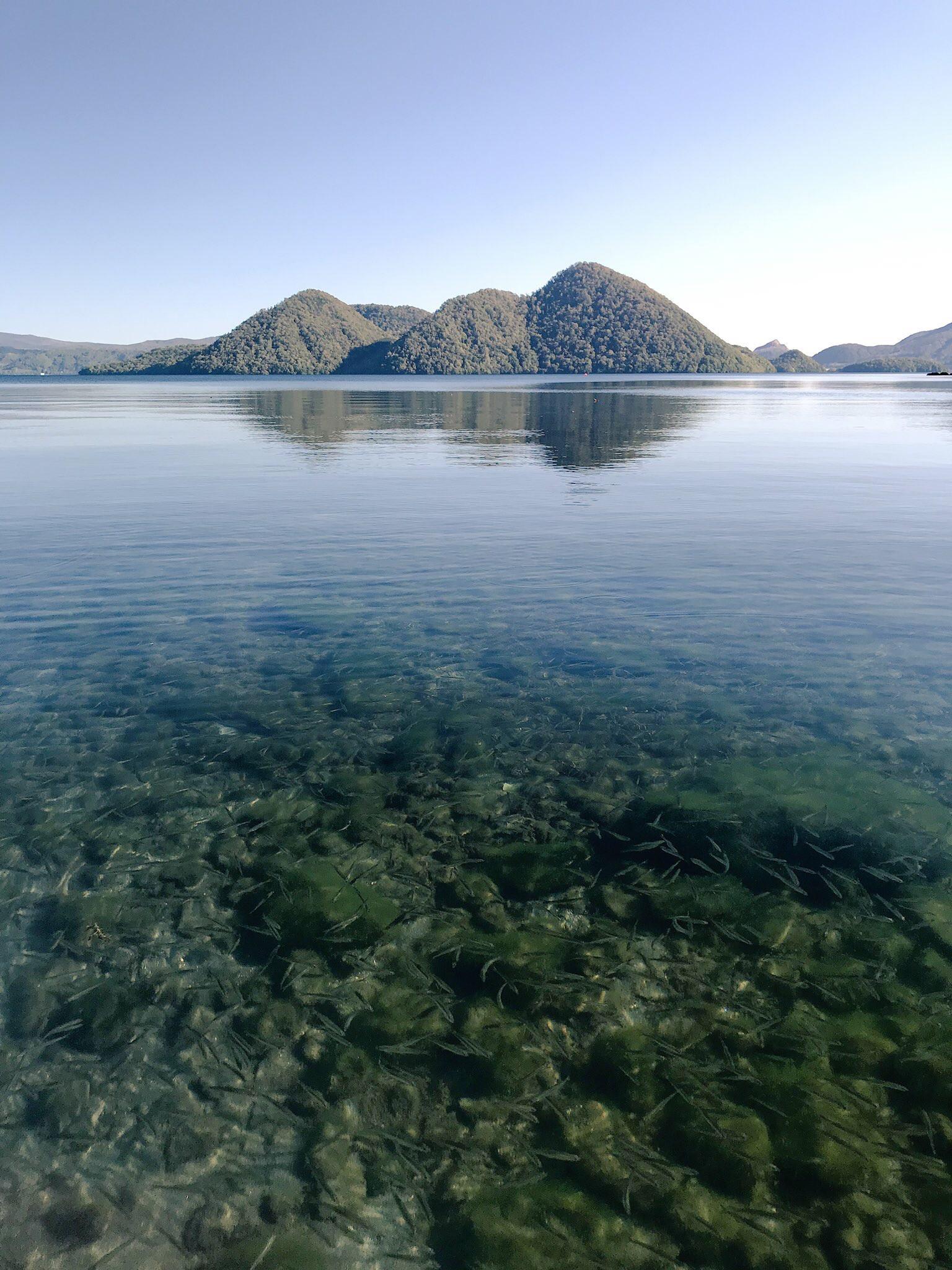 洞爺湖中島水中.jpg