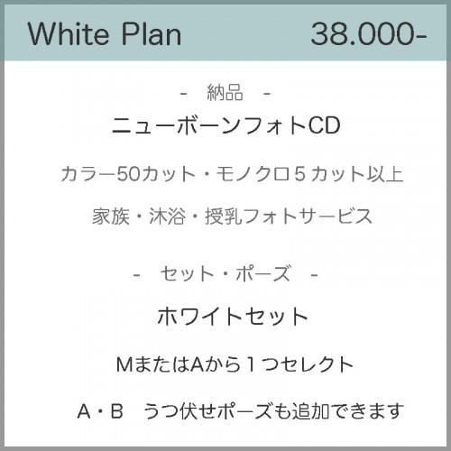 2020ホワイト.jpg