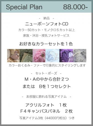 スペシャル2020.jpg