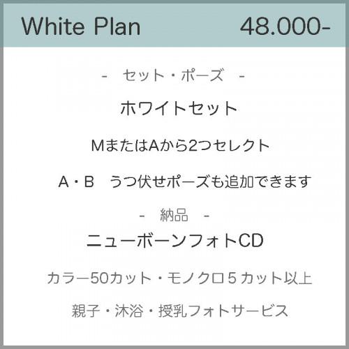 価格2021ホワイト.jpg