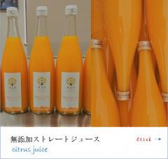 jyu-su.jpg