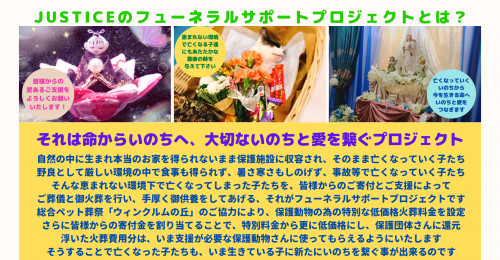 Cream Wedding Photo Frames Facebook Coverのコピーのコピーのコピー.png