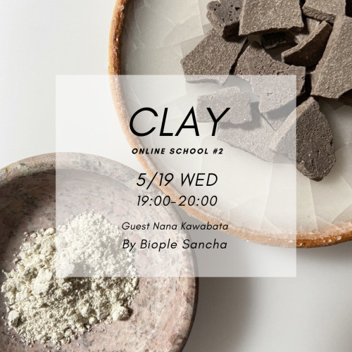 Clay lesson#2.png
