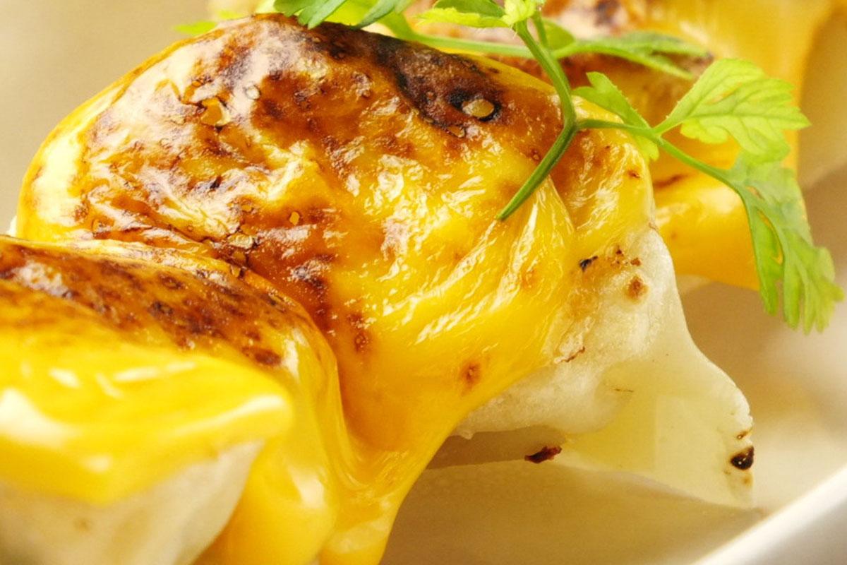 541+ koyoi 餃子 (ギョーザ) 炙りチェダーチーズ焼餃子