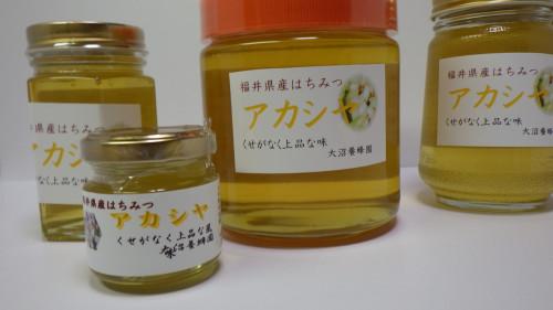 アカシヤ.JPG