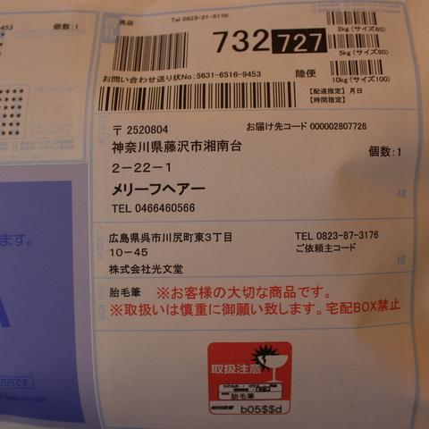 IMG_8972.JPG