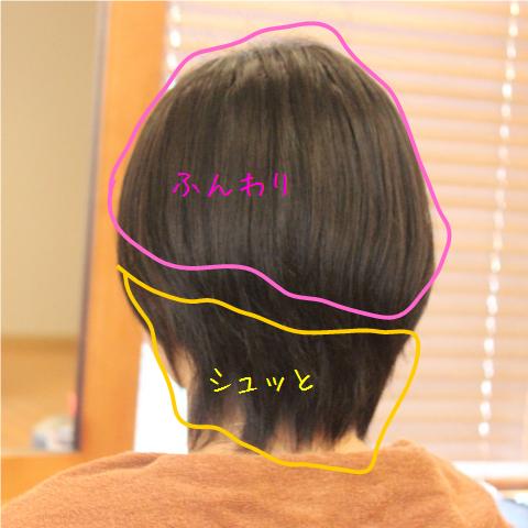 縮毛矯正ショート1.png