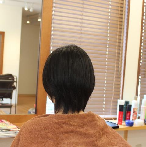 縮毛矯正ショート3.JPG