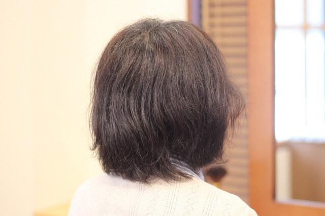 白髪パサつき