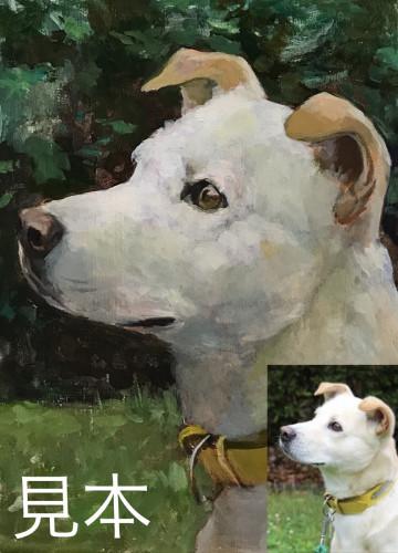 犬見本base用j.jpg