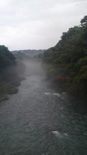 20110619.jpg