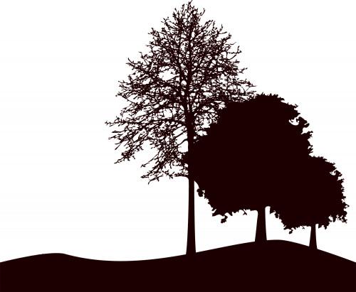 leaf0112.jpg