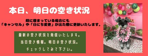 ピンク、黄色、夏楽しい友達Facebookカバー (1).png