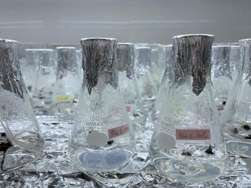 メリクロン瓶 (2).JPG