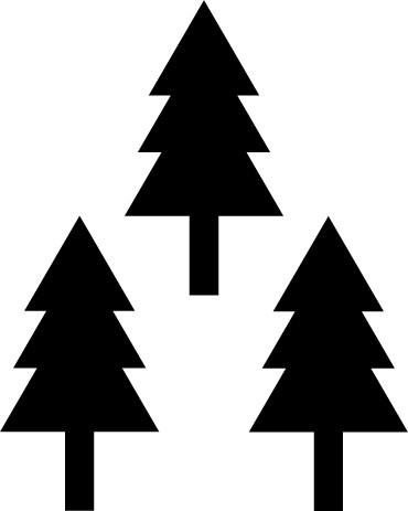 3本杉.png