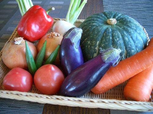 野菜2 ヨコ1000P.jpg