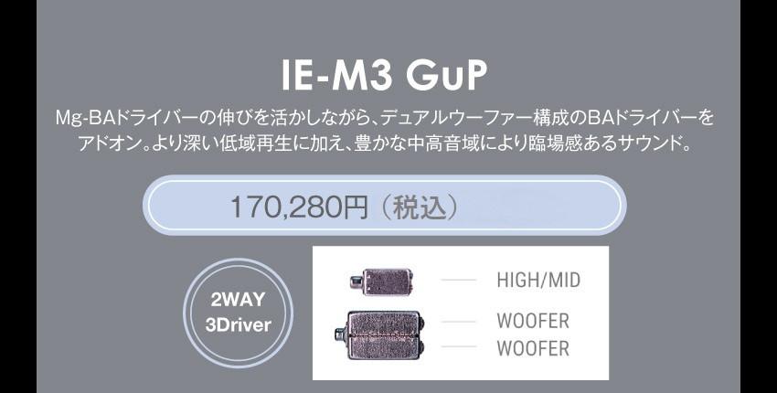 GuP_IEM_M3.jpg