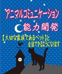 アニマルコミュニケーション☆ミ220.jpg