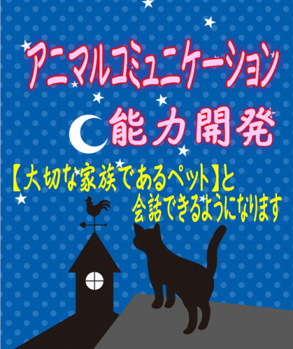 アニマルコミュニケーション☆ミ.JPG