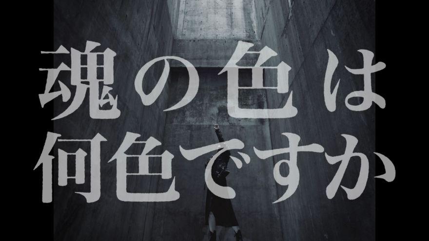 anima_cap.jpg