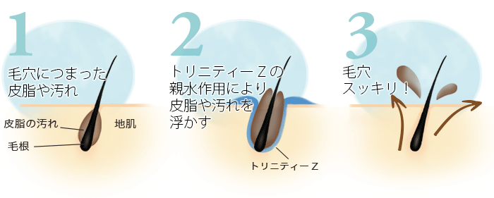 トリニティZの超親水性により、頭皮の皮脂や汚れを除去