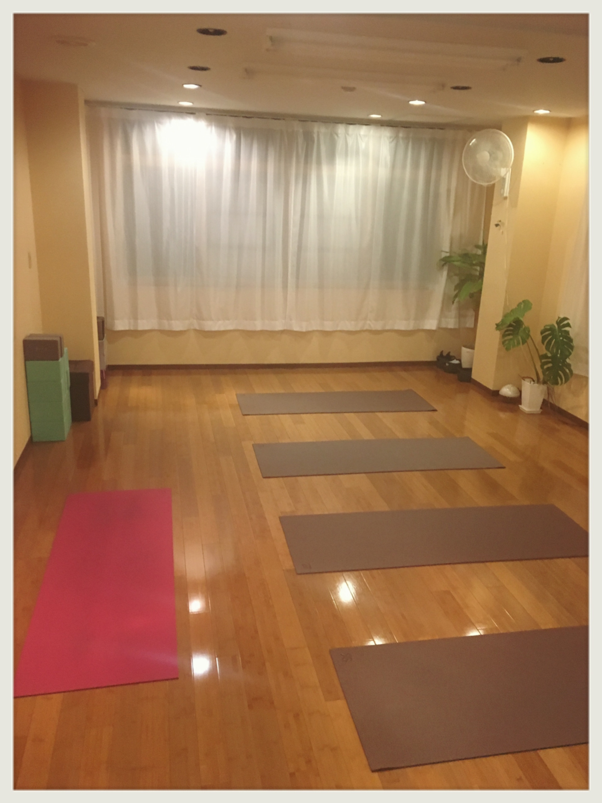 mellow-yoga(メローヨガ)の画像