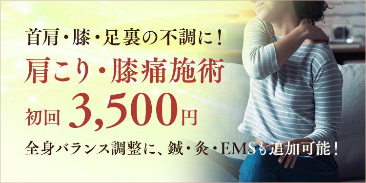 本気の肩こり・膝痛施術 初回3,500円 四十肩・五十肩改善