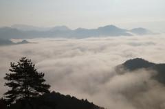 雲海8.jpg
