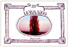2006北海道カード.jpg