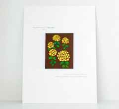 2014秋の植物展L1030126-web.jpg